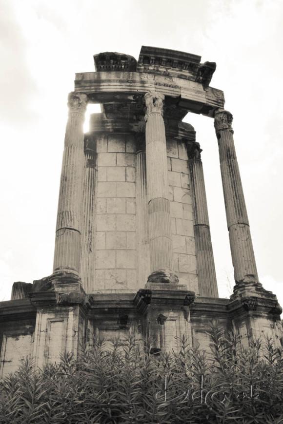Dzidra Fotografie, Rome reisfotografie